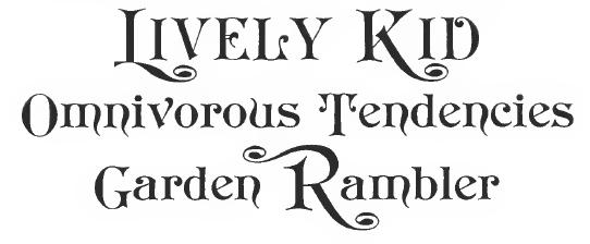 Font names/aliases