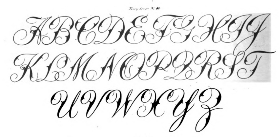 Fancy script fonts zoom unique font