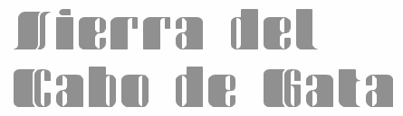 huge selection of 16b66 c5a9e 1968) is a FontStructor (aka elmoyenique) who used FontStruct to make  several modular typefaces starting in 2010. The typeface names start with z.