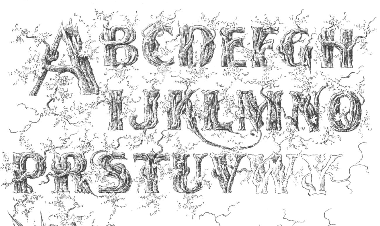portfolio of ornate penmanship