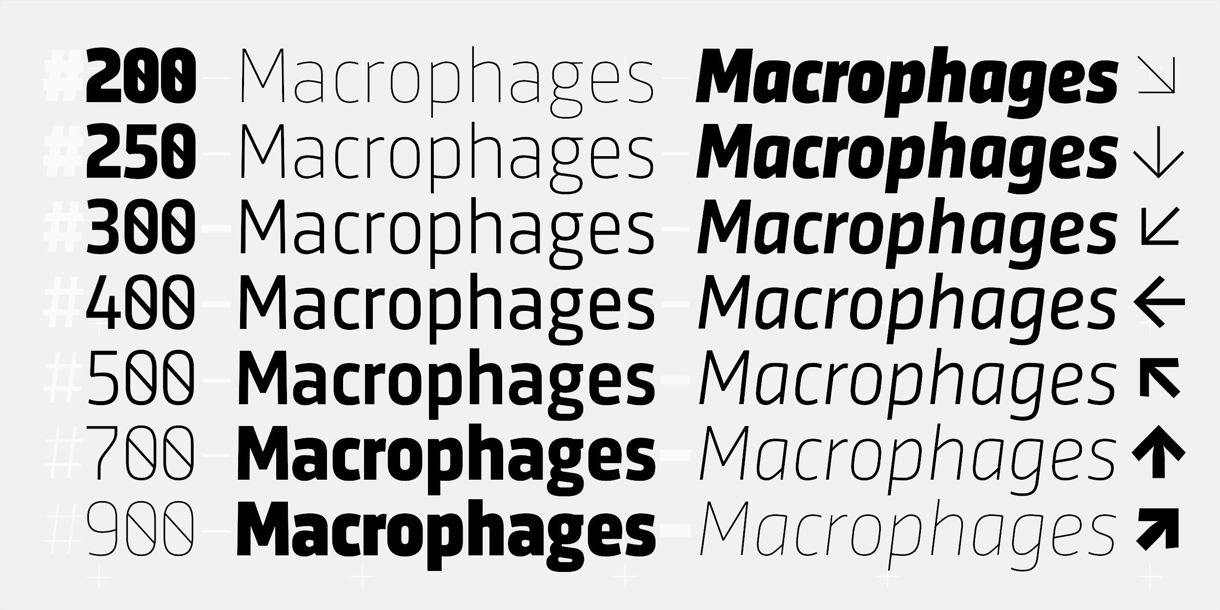 Typemefonts (was: 26plus zeichen)
