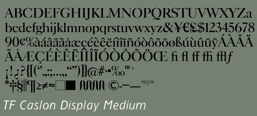 tf burko font
