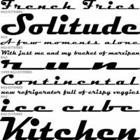 Learn FontLab Fast - Typography Books - Typography.Guru