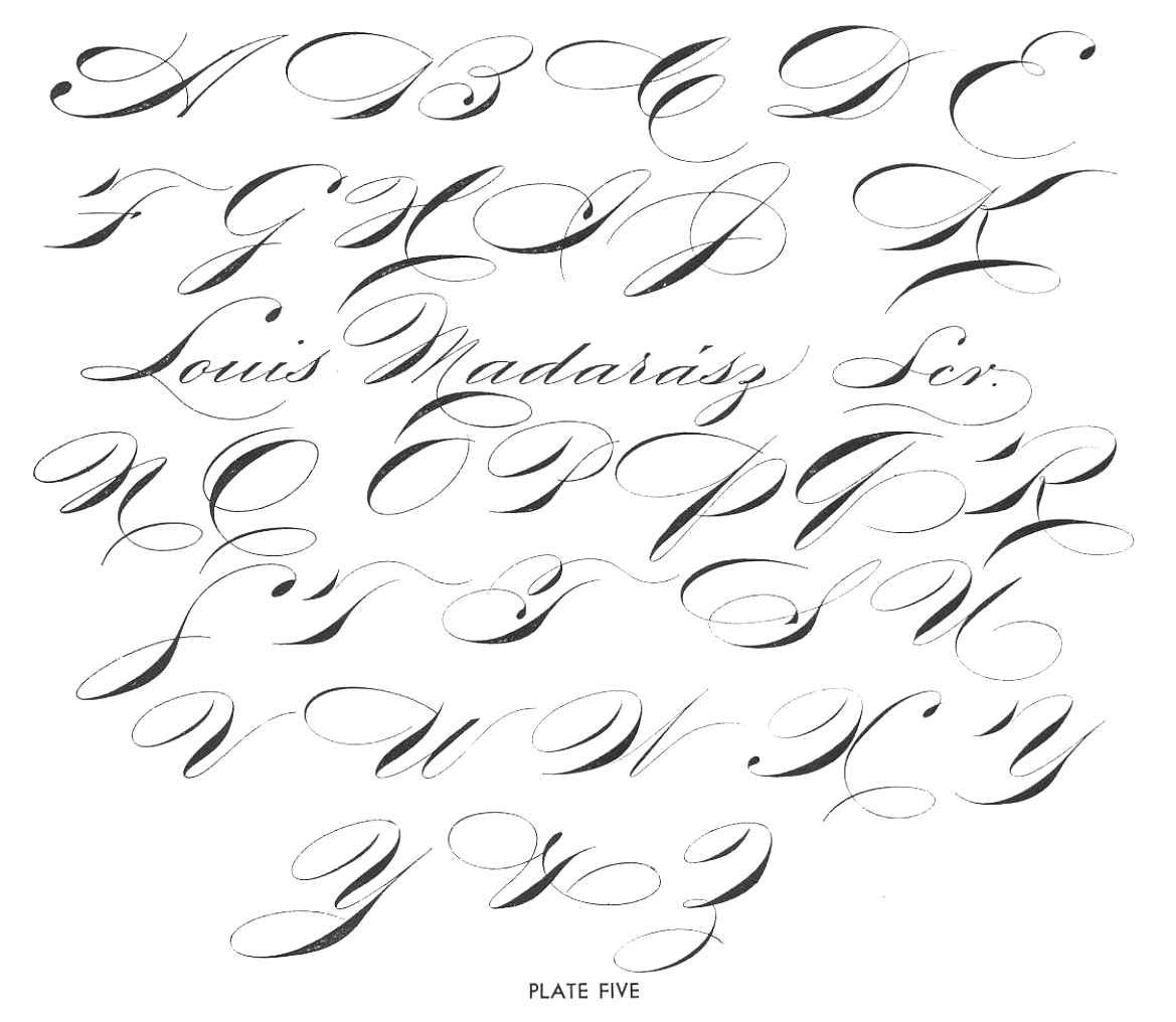 Image Gallery Signature Alphabet