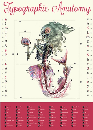 File Name Mariana Dominguez Cosson Typographic Anatomy Poster 2013