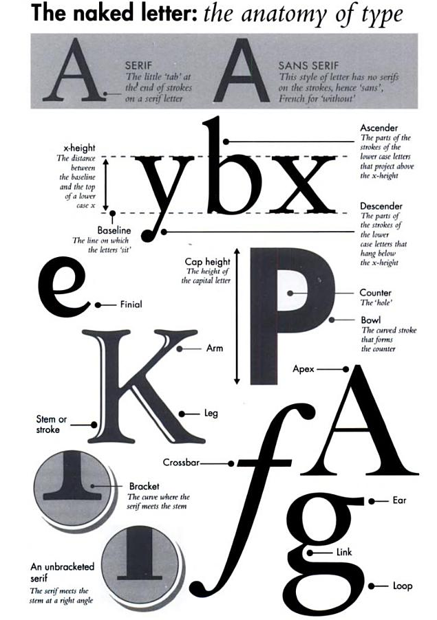 Type Glossaries